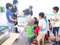 2015年度 富山湾の魅力体験親子教室