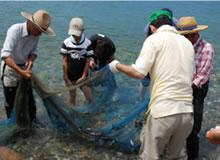 地引き網&とれたて夏魚で料理体験