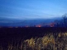 シベリアの原野・森林火災と環境変化