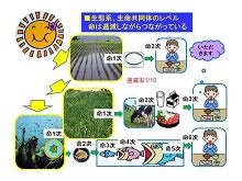 生態系概論 ~富山の森・里・海を例にして~