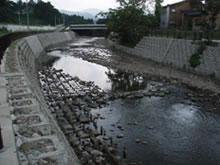 自然環境の保全と川づくり-豊かな川と安全性の調和